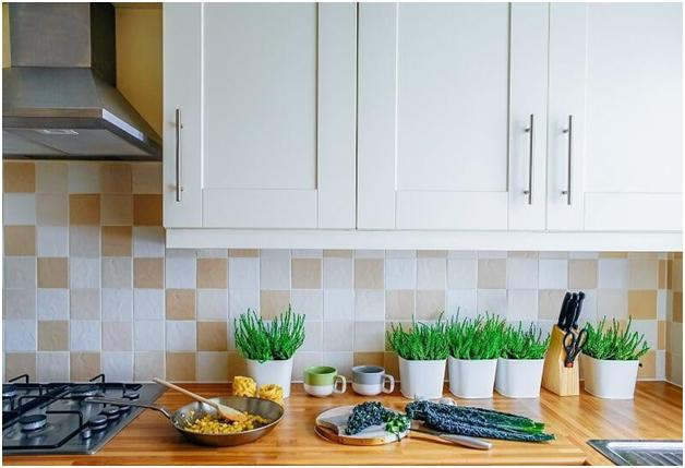 indoor plants into the kitchen